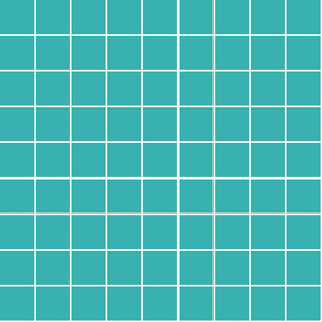 "teal windowpane grid 2"" reversed square check graph paper"