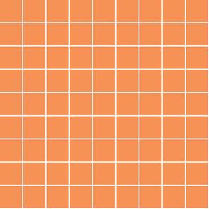 "tangerine orange windowpane grid 2"" reversed square check graph paper"