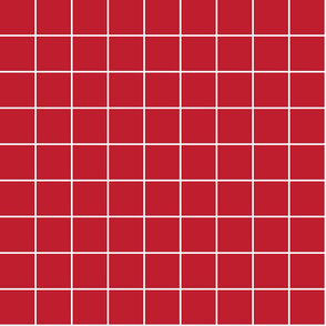 """red windowpane grid 2"""" reversed square check graph paper"""