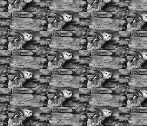 Heart Faced Owl fabric by thehouseeclectic_ on Spoonflower - custom fabric