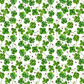 Lucky 4 Leaf Clover Lady Bug Green