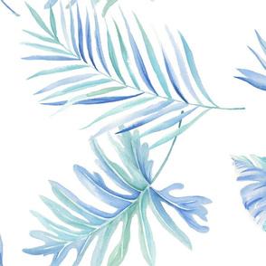 Aqua palm