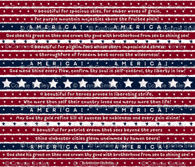 America-the-beautiful-small_preview