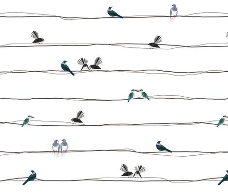 Nz Birds On A Wire Giftwrap Plumbilly Spoonflower