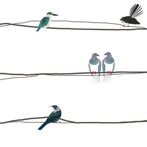 NZ Birds on a wire