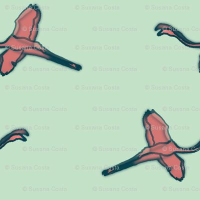 flamingos watercolor  pistácio