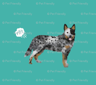 australian cattle dog fart funny cute dog breed blue heeler teal
