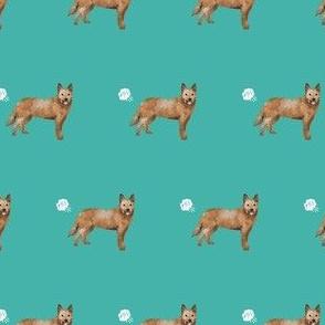 australian cattle dog fart funny cute dog breed red heeler teal