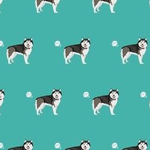 alaskan malamute dog fart funny cute dog breed teal