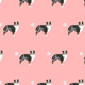 australian shepherd blue merle dog fart funny cute dog breed pink