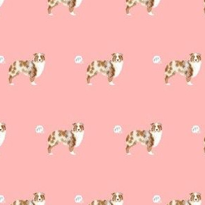 australian shepherd red merle dog fart funny cute dog breed pink