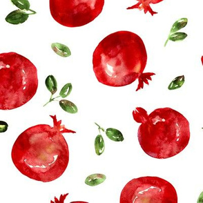 Watercolor pomegranate, large scale