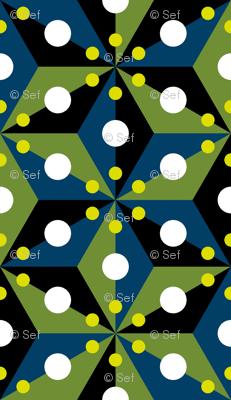 07358298 : SC3C spotty : firefly