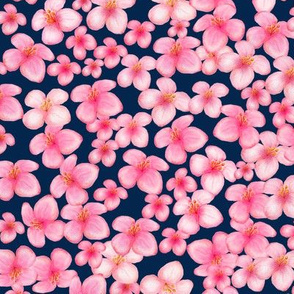 Pink Blossoms On Navy