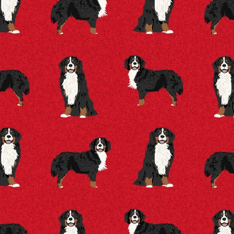 Rbernese-a-dog_shop_preview