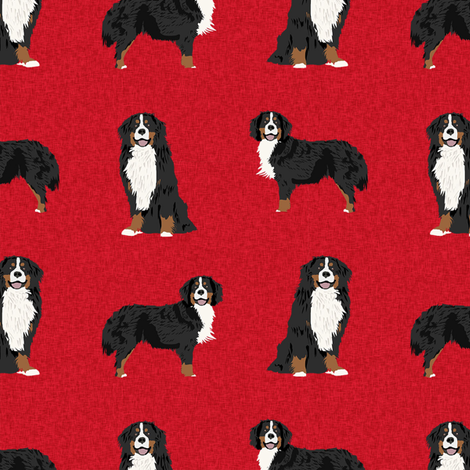 bernese mountain dog pet quilt a coordinate dog fabric  fabric by petfriendly on Spoonflower - custom fabric