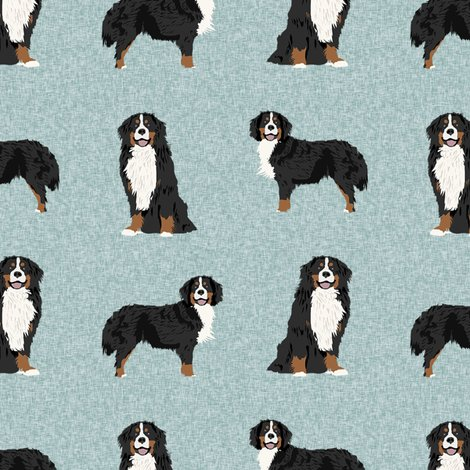 Rbernese-b-dog_shop_preview