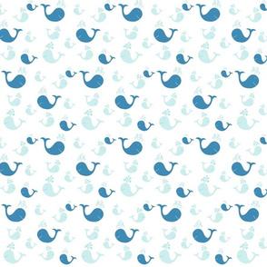whale tales splash 525- blue