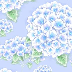 Just Hydrangea