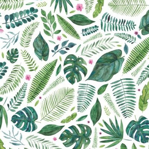 Tropical jungle leaves