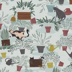 Farmhouse Felines