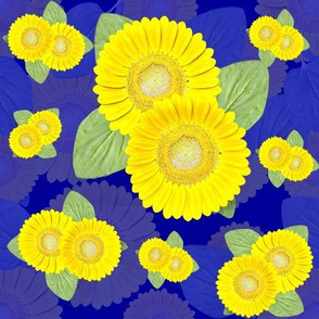Sunflower Surround