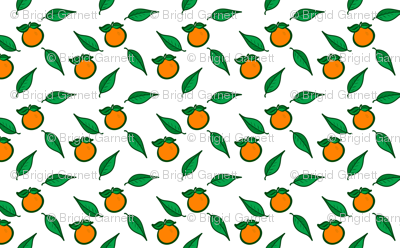 Fresh Picked Oranges 2
