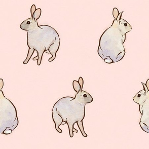 Wild Rabbits - Blush [Large]