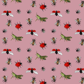 Insect repeat pink