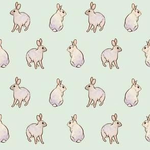 Wild Rabbits - Robin's Egg Blue [Small]