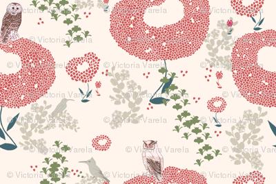 Patagonia-birds