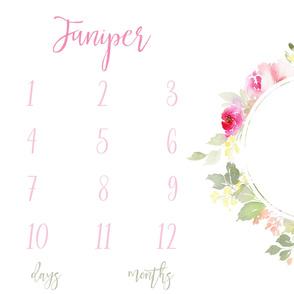 Juniper Florals Girl Milestone Baby Blanket