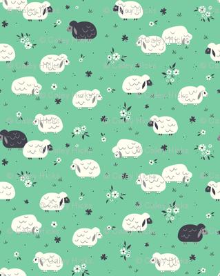 Sheep & Clovers