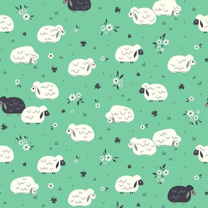 Sheep & Clovers