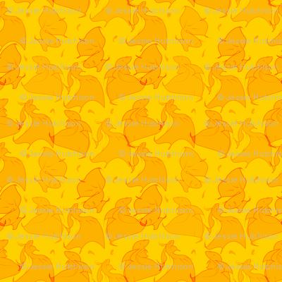 Orange Beta Fish