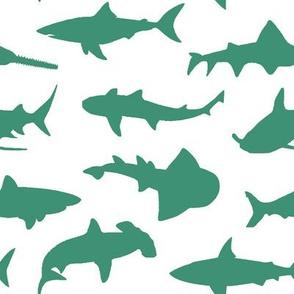 Aquamarine Sharks // Large