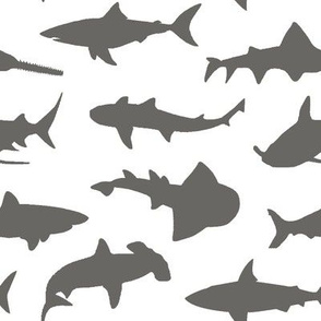 Grey Sharks // Large