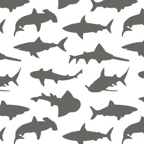 Grey Sharks // Small