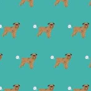 brussels griffon dog breed funny fart teal