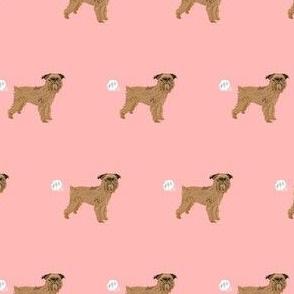 brussels griffon dog breed funny fart pink