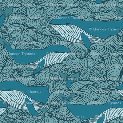 Blue Whales & Waves