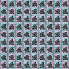 Black Pugs Checker Board