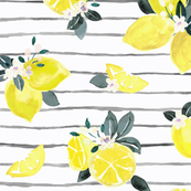 Citrus + Flowers lemon stripe
