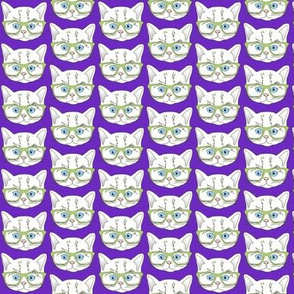 Kitten Hipster Purple Small
