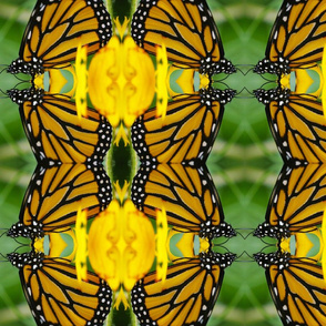 Symmagery Monarch Butterfly