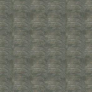 Endangered Elephant Sumatra skin