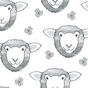 Rrsheep-random-with-clover-on-white_shop_thumb