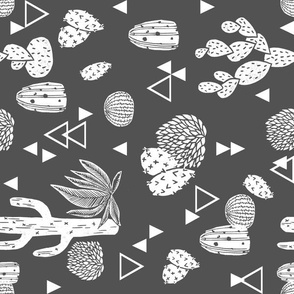 cactus // charcoal geo triangles tri