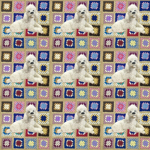 Jolly Vintage Poodle on Crochet Blanket
