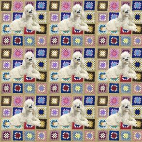 Jolly Vintage Poodle on Crochet Blanket